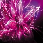 Картина за инфрачервен панел за отопление размер L 60х90 см 3D цвете (S)