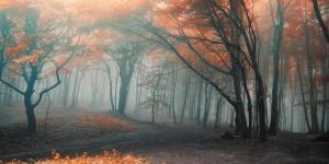 Картина за инфрачервен панел за отопление размер L 60х120 см Есен в планината (L)
