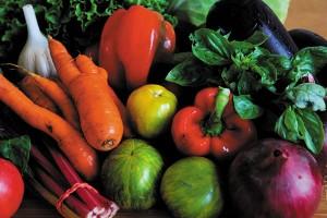 Картина за инфрачервен панел за отопление размер М 60х90 см Зеленчуков микс (М)