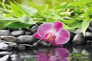 Картина за инфрачервен панел за отопление размер M 60х90 см Орхидея на камани (М)