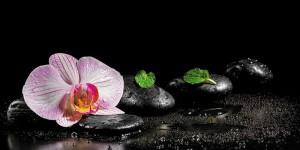 Картина за инфрачервен панел за отопление размер L 60х120 см Орхидея на тъмно (L)
