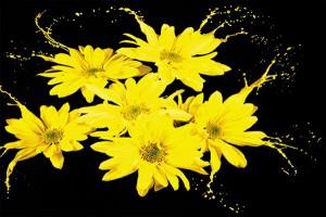 Картина за инфрачервен панел за отопление размер L 60х90 см Жълтите цветя в боя (М)