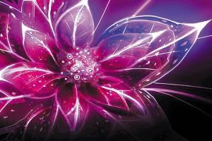 Картина за инфрачервен панел за отопление размер M 60х90 см 3D цвете (М)